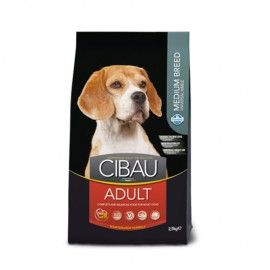 CIBAU-ADULT